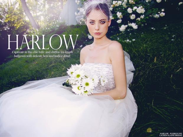 HarlowLookbookCover