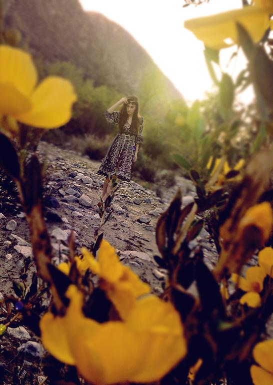 sundaysafari7laurenelainepowell