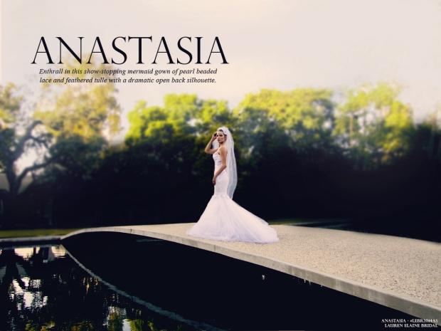 ANASTASIAlookbookcover