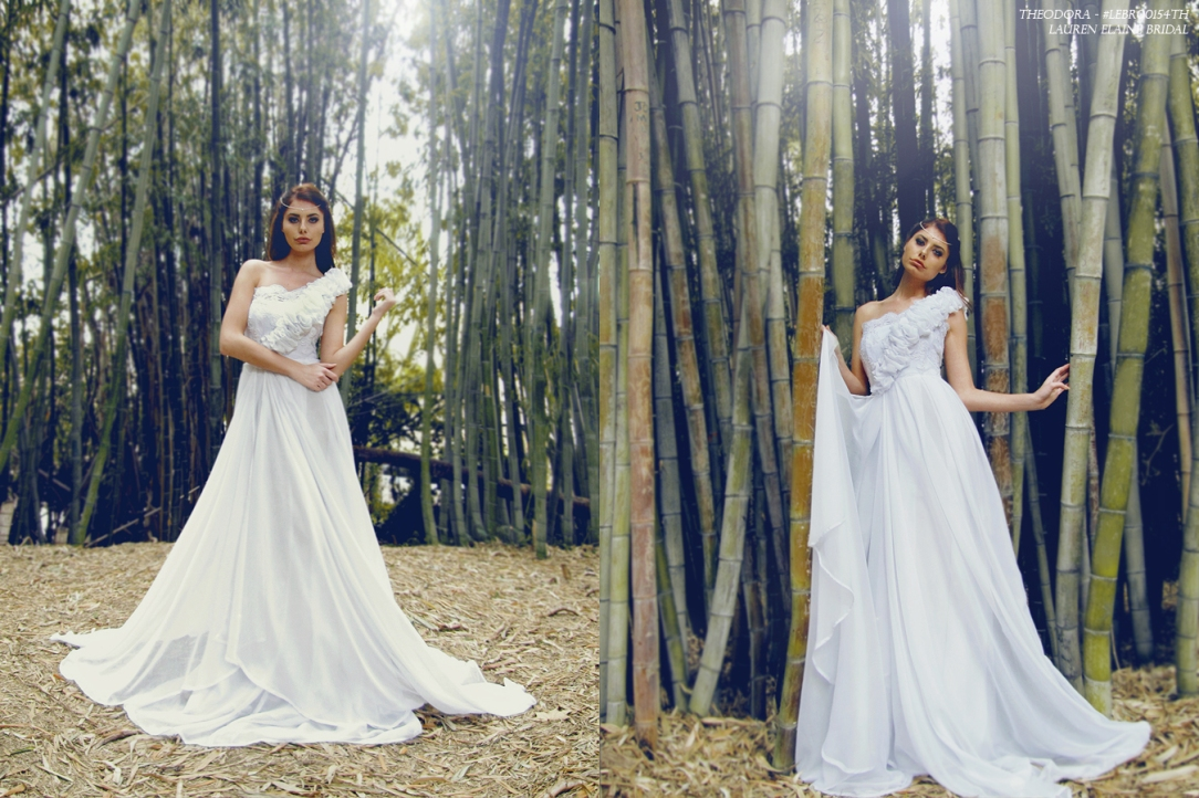 theodora gown by lauren elaine bridal