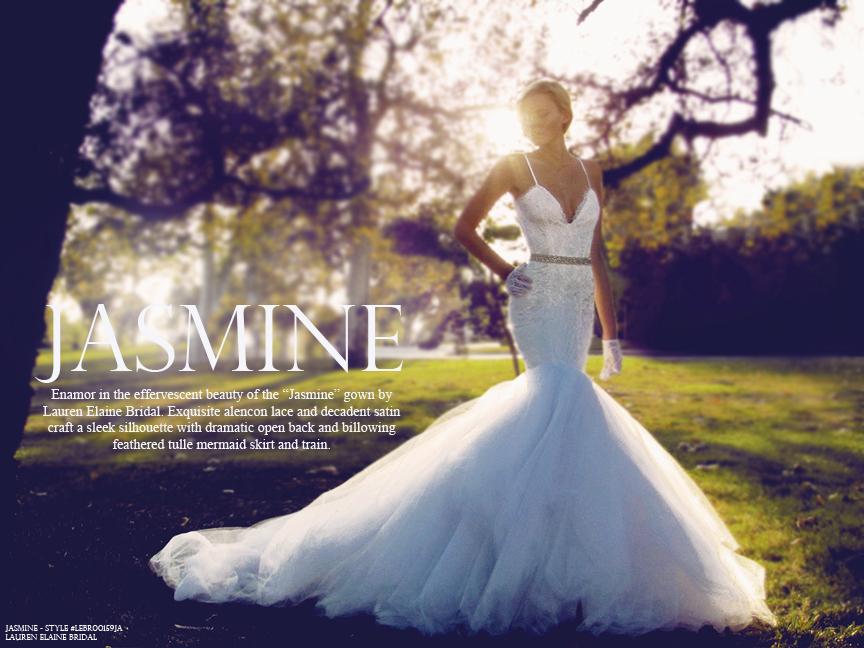 Lauren Elaine Bridal Jasmine wedding gown