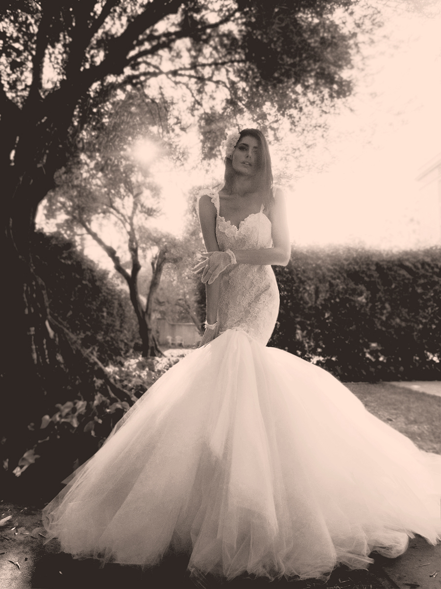 "Lauren Elaine ""Calais"" mermaid gown with v-cut and cathedral lace train"