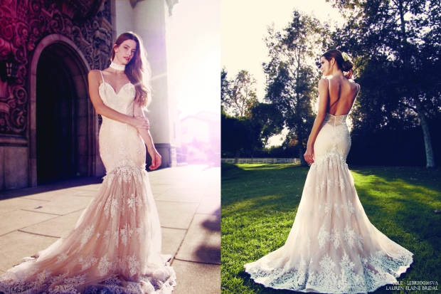 Vaile by Lauren Elaine wedding gown featuring blushing nude underlay and illusion back with mermaid/trumpet silhouette