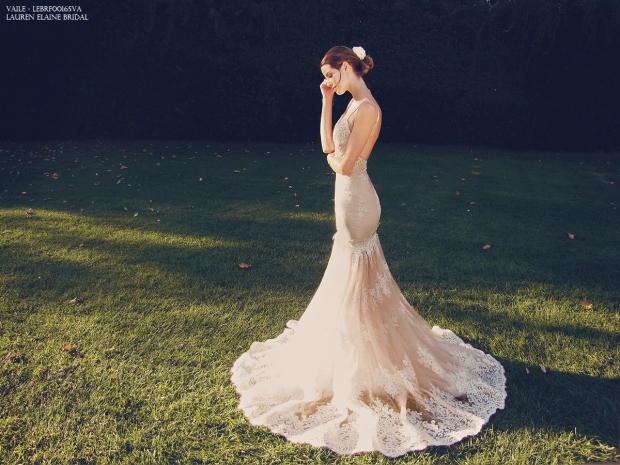 Vaile by Lauren Elaine blush backless mermaid wedding gown with lace train