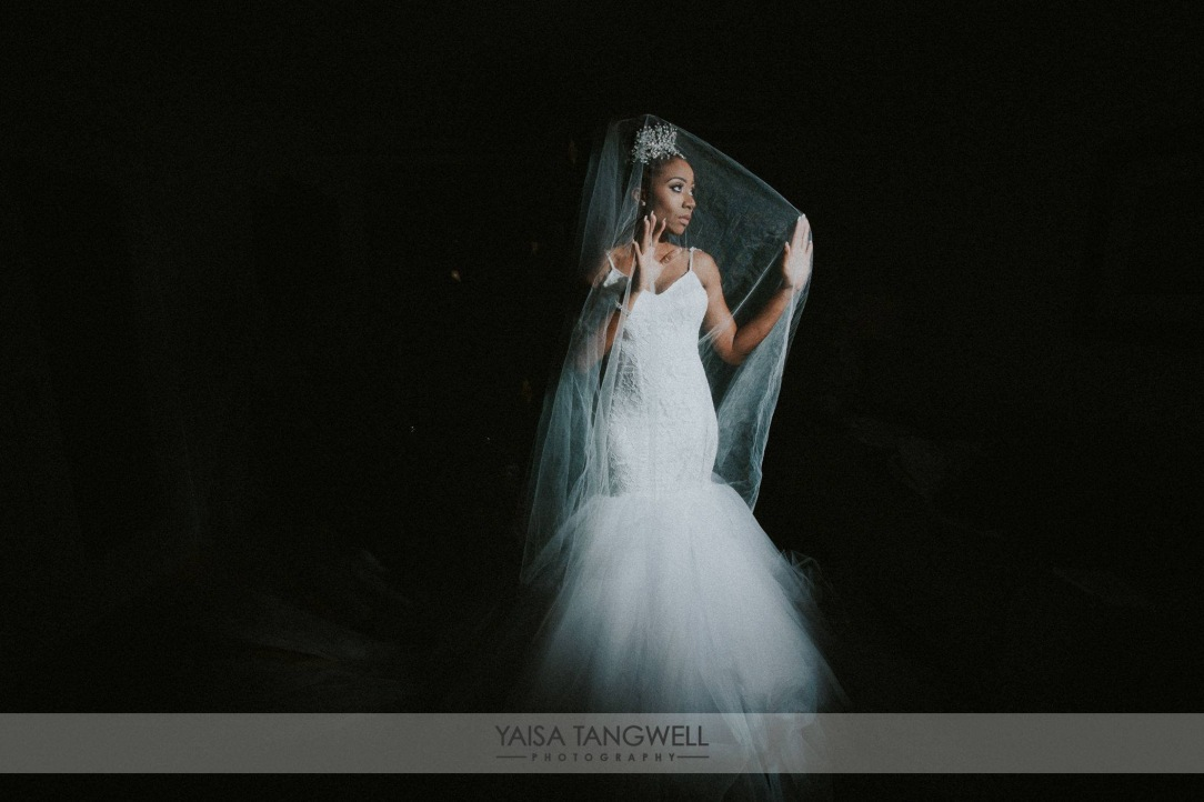 Artistic shot of Bride Lynnel in her custom Lauren Elaine Jasmine mermaid wedding gown with cathedral tulle train and veil