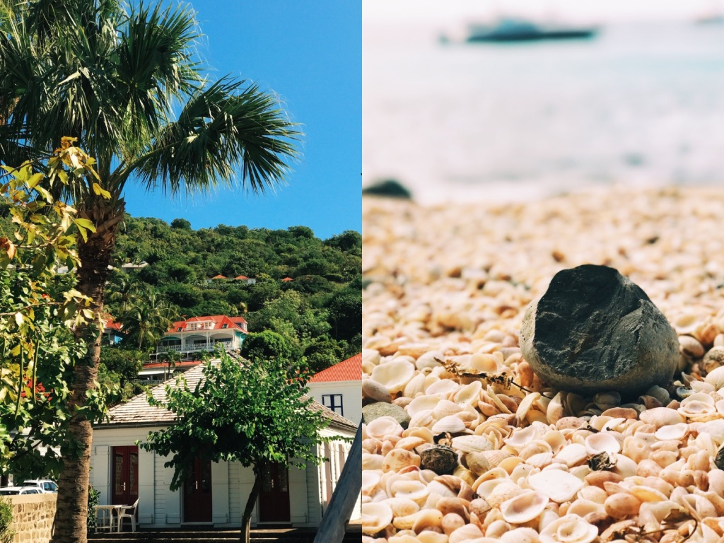 Shell Beach in St. Barts West Indies