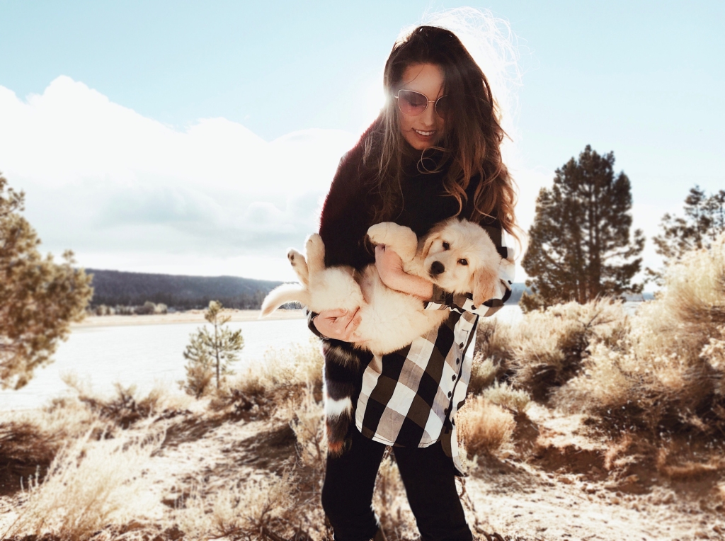Fashion designer Lauren Elaine plays with Golden Retriever puppy Mojave in Big Bear Lake, California