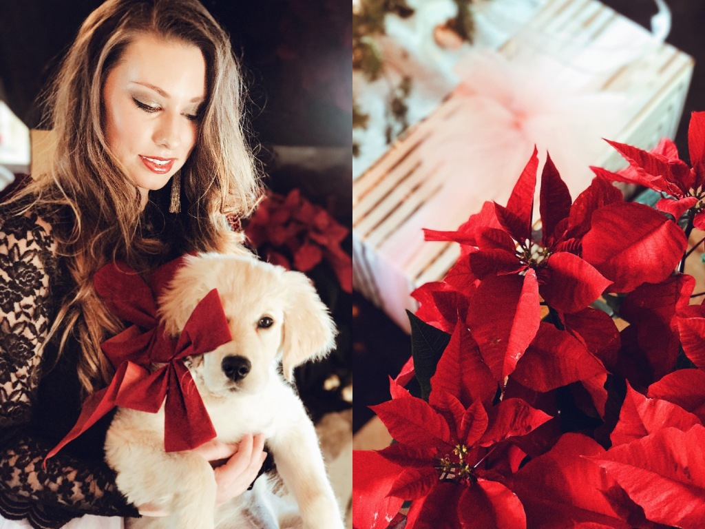 Fashion Designer Lauren Elaine poses in front a Holiday Poinsettia display with her Golden Retriever puppy, Mojave.