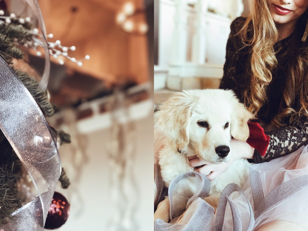 Fashion Designer Lauren Elaine poses for Christmas photos with her Golden Retriever puppy, Mojave at home in Los Angeles